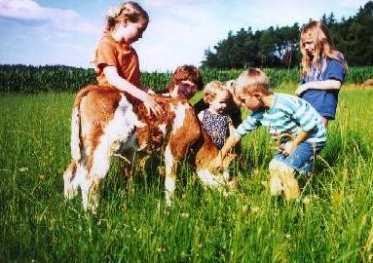 Bauernhof urlaub kinder